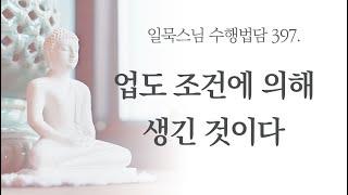 [자막] 업도 조건에 의해 생긴 것이다ㅣ일묵스님ㅣ제따와나선원 수행법담 397.