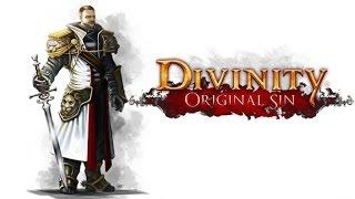 Divinity Original Sin : Vale ou não a pena jogar