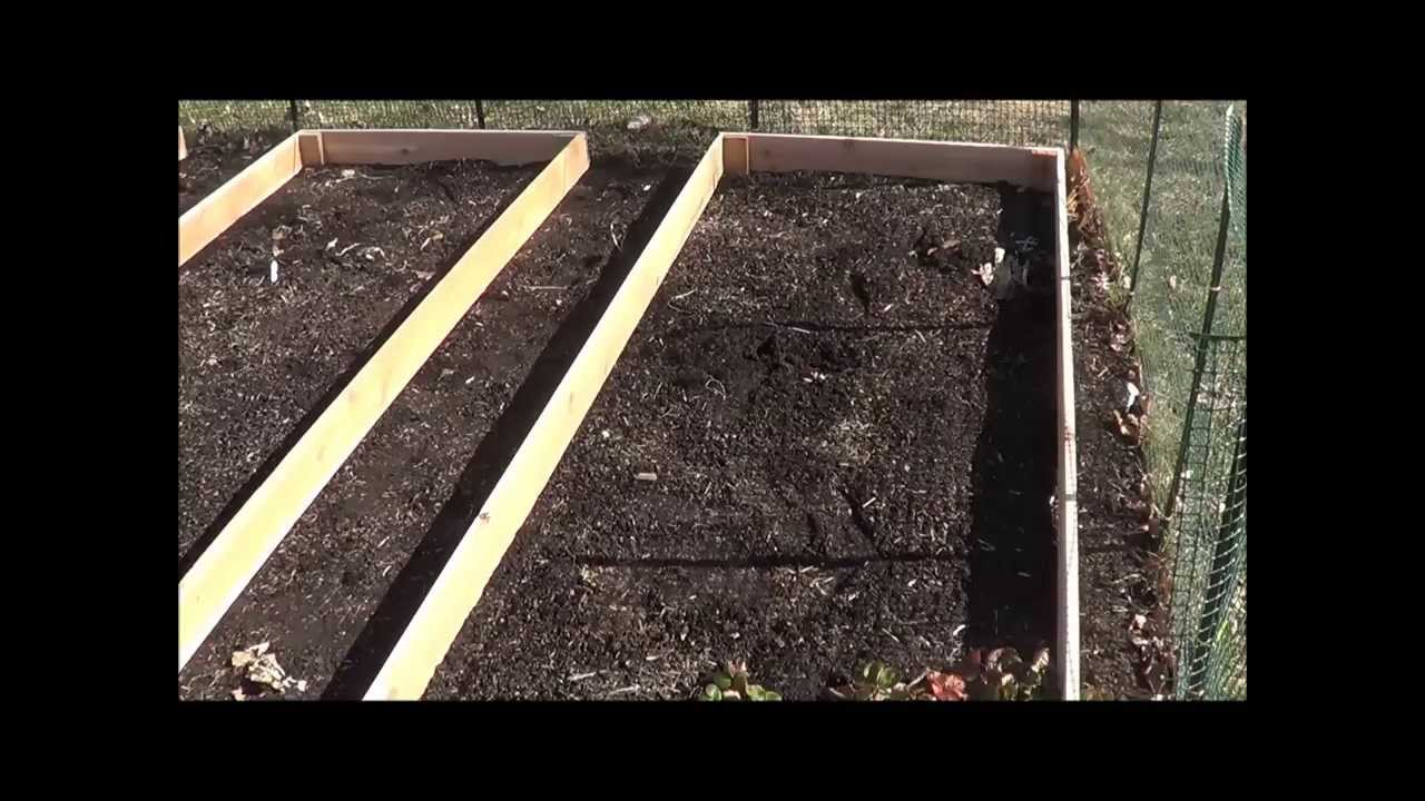 How to build raised garden beds Cedar raised garden beds YouTube