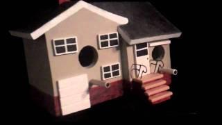 Custom Made Bird Houses By Jerome Zadar