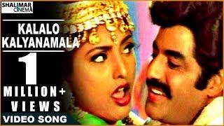 Kalalo Kalyanamala Full Video Song  Peddannayya Movie  Balakrishna, Indraja, Roja