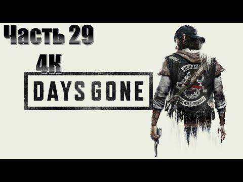 Days Gone Часть 29 Страх Смерти (МАКСИМАЛЬНАЯ СЛОЖНОСТЬ)