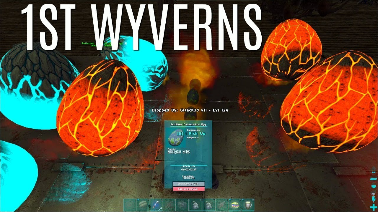 FIRST WYVERNS and Teleporter BUILD - Official PVP (E4