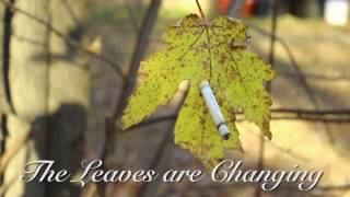 The Leaves Are Changing