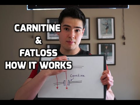 how to lose weight with l carnitine