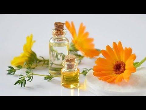 Download Lekovita svojstva nevenovog ulja. Evo kako da ga napravite