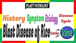 Blast disease of Rice, Symptom, Etiology, Disease Cycle | Pyricularia oryzae,P. grisea| PAC #13