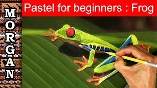 Pastel Painting Techniques for Beginners : wildlife art : Jason Morgan