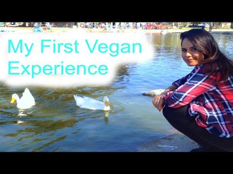 My First Vegan Experience