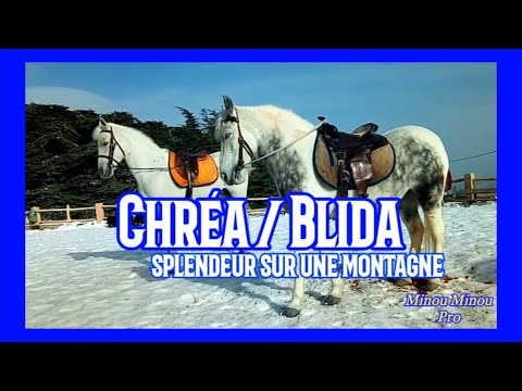 Chréa Blida HD شريعة البليدة