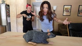 RAT PRANK ON MOM!! (HILARIOUS)
