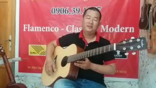 Test guitar kiểu dáng baden - 3tr - 0906391557