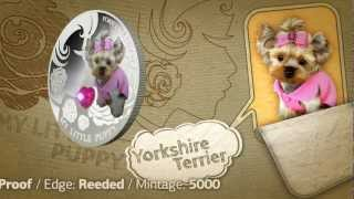 Dogs And Cats Fiji 2013 Silver Coin Yorkshire Terrier First Coin In My Little Puppy Series