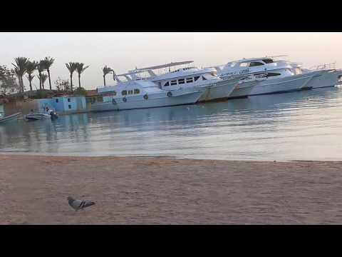 Hurghada Regina Swiss