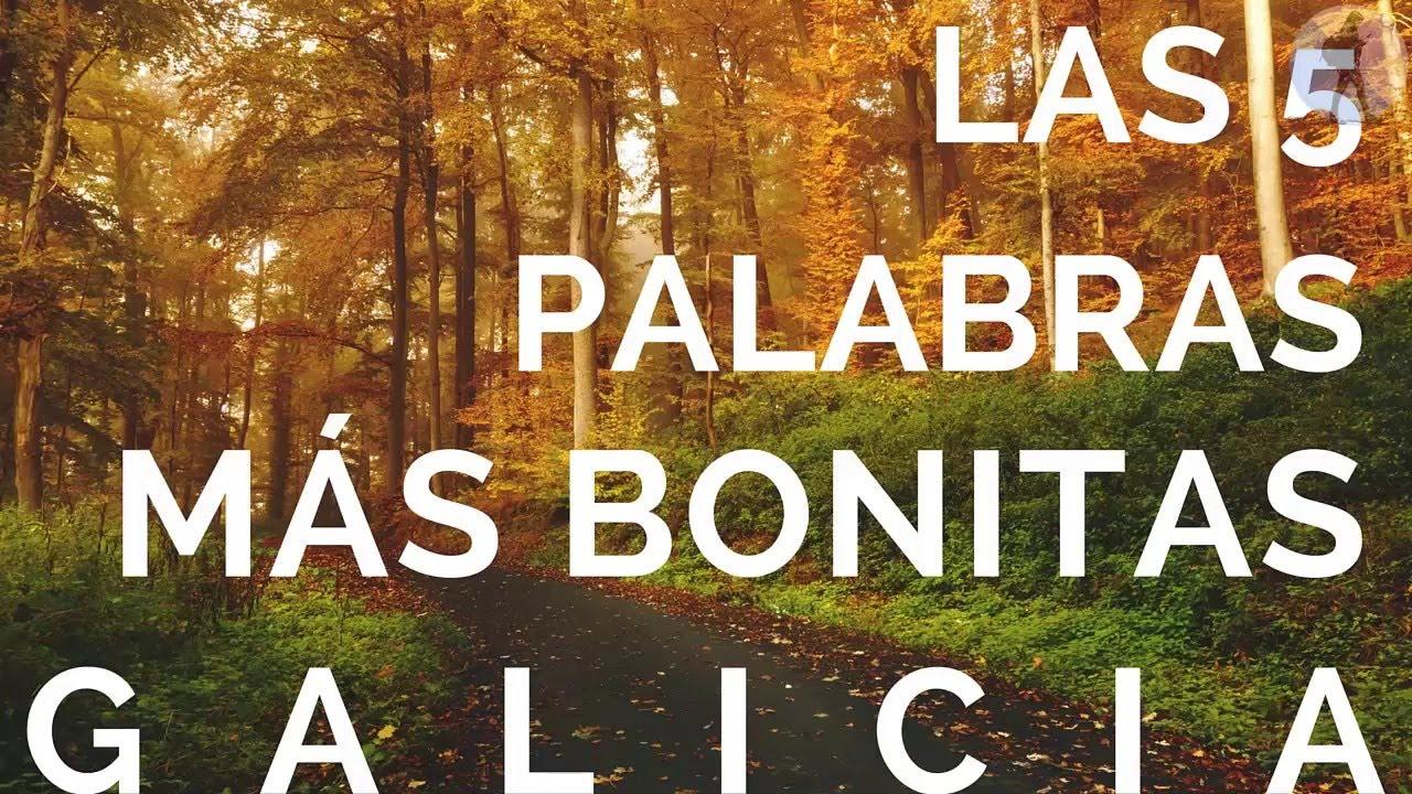 Palabras De Amor En Gallego Unifeed Club