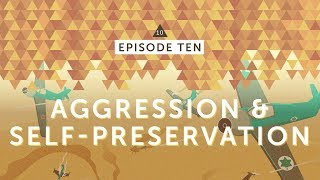 IsraelPalestine For Critical Thinkers: #10 Aggression & Self-Preservation
