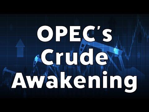 OPEC's Crude Awakenings