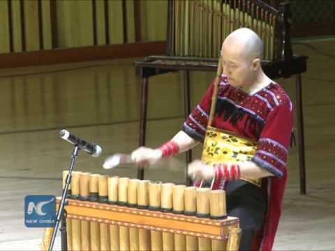 Music bridges China, Vietnam cultures: Vietnamese musician