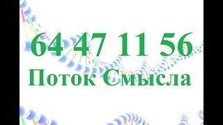 Скачать Поток Смысла 64 47 11 56