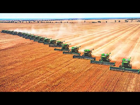 Largest Farms in The World That Will Shock You