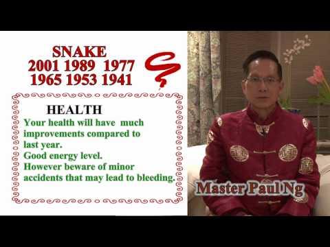 Master Paul Ng 2017 Chinese Zodiac Predictions- Snake