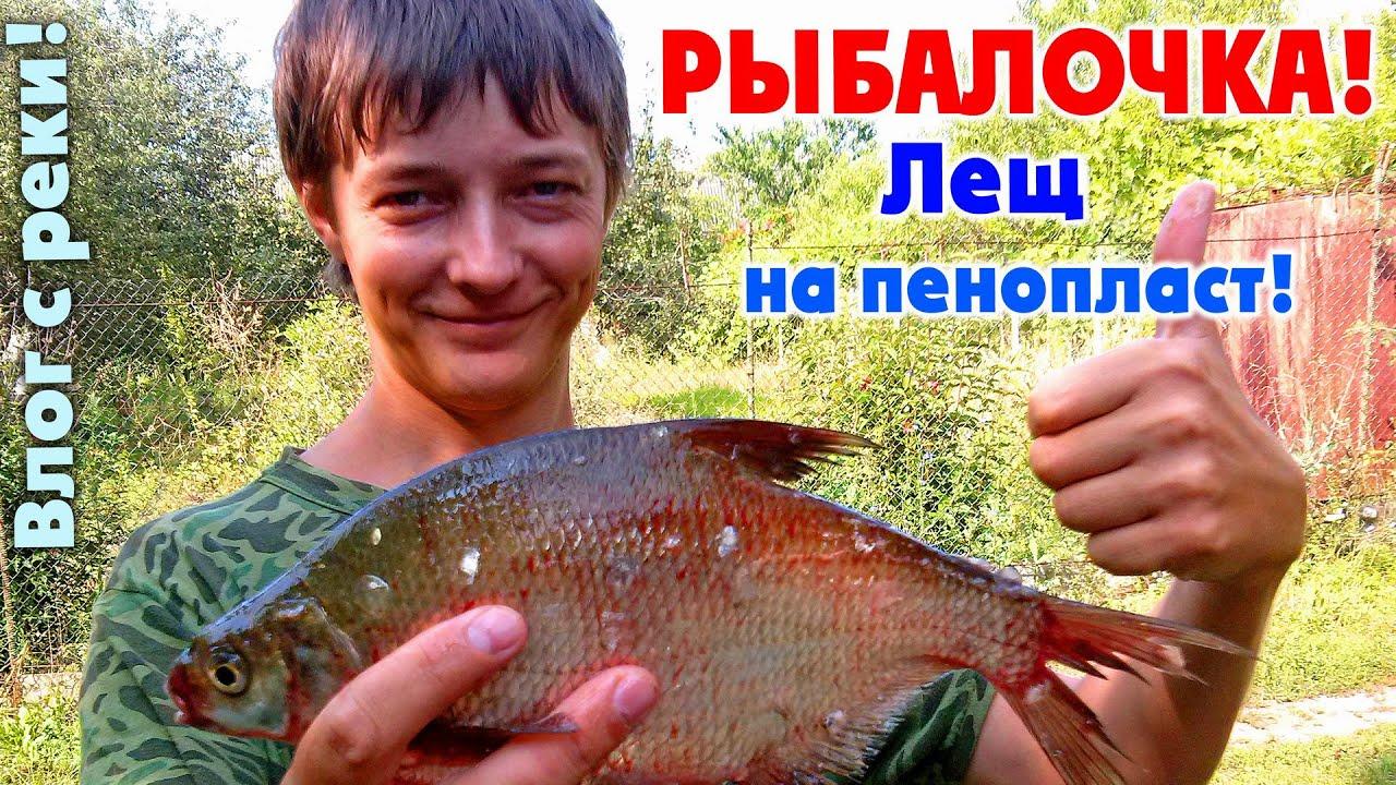 рыбалка на леща на северском донце