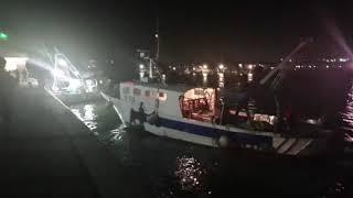 La ripresa dell'attività di pesca nell'Adriatico