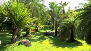20130325 Thailand tours Пхукет, Пхукетский ботанический сад пальмовый, бамбуковый парк, парк бабочек(Как бесплатное развлечение на Пхукете есть ботанический сад. Представлена разнообразная растительность..., 2013-06-30T04:07:50.000Z)