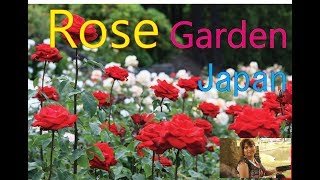Video The Most Famous Rose Garden (Rose Heaven) in Yamagata Prefecture, Japan Full HD 1080p Video download MP3, 3GP, MP4, WEBM, AVI, FLV November 2017