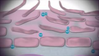 Propiedades del Agua Termal Uriage en la piel