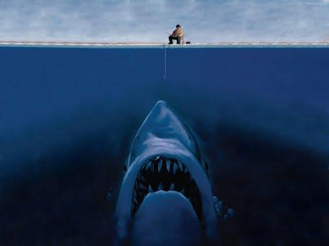 Поймали акулу в Нью-Йорке!!!