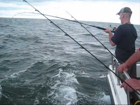 Rhyl Sea Fishing Charter Boat - Suveran - 9th July 2010 - Shark Fishing