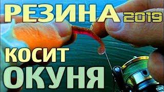 Рыбалка на окуня летом, ловля окуня на силиконовые приманки