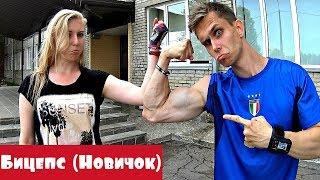 Как Накачать Бицепсы Новичку с Гантелями