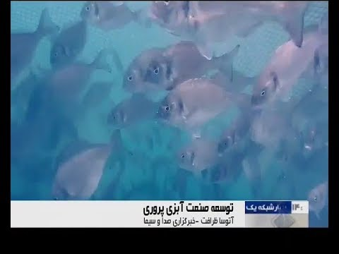 Iran 2nd International Fisheries and Seafood Industry Exhibition, Tehran city