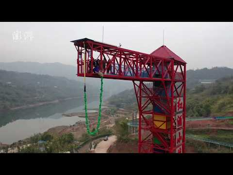 Tourist attraction had pig do bungee jumping for celebration, angering netizens