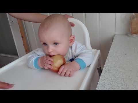Витрификация эмбрионов