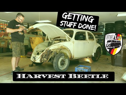 Let's Get Stuff Done on the Harvest Beetle!