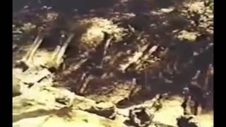 Дорога на Куропаты (1990).