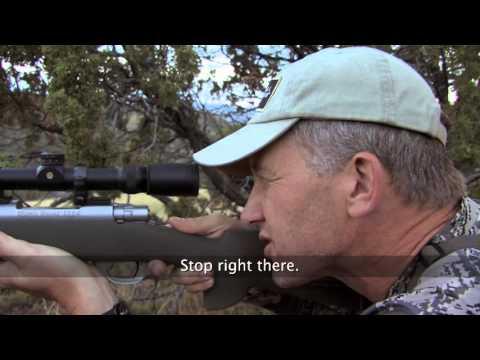 Hunting Arizona Elk with Randy Newberg - (OYOA S4 E8)