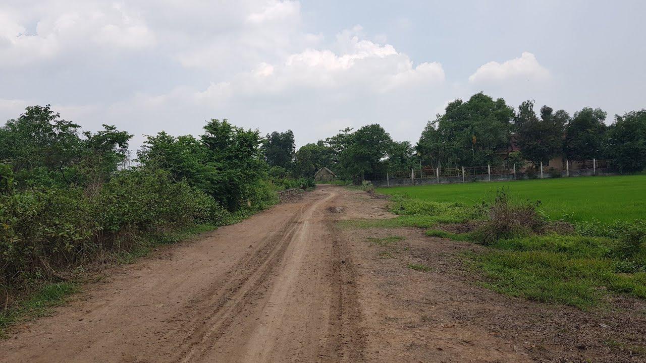 Bán đất Tân Thông Hội Củ Chi 4000m2-2ha giá 500k/m2