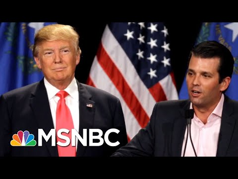 Lawrence: Why Would President Donald Trump Put His Son In More Legal Danger? | The Last Word | MSNBC