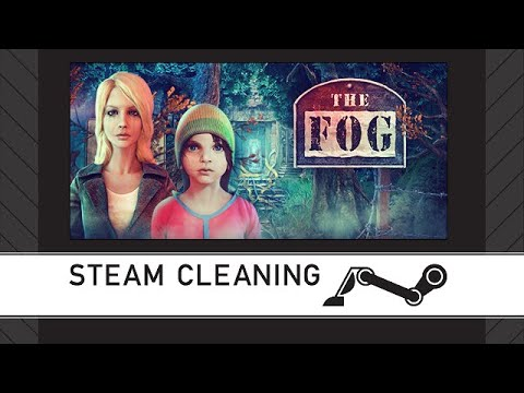 Steam Cleaning - The Fog: Trap for Moths |