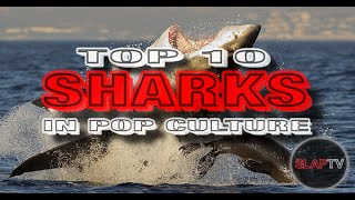 The 20 Greatest Sharks In Pop Culture History
