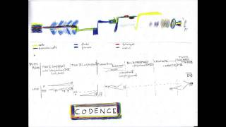 Codence (2014) by Lori Freedman