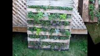 Building A Vertical Pallet Garden