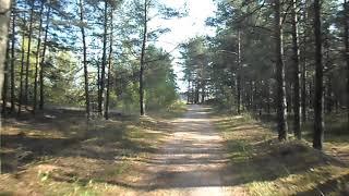 Рига Болдерая - озеро в лесу