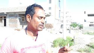 Today I am catched Rat Snake marikunta village wanaparthy district Sagar snake society 99855 455 26