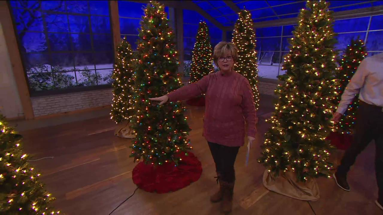 Bethlehem Lights Canterbury Slim Christmas Tree on QVC ...