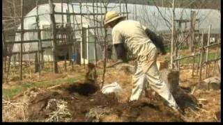 Spring Gardening Tips : Spring Gardening Tips: Compost Pile